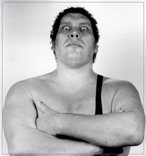 andre-the-giant-e1446763291221