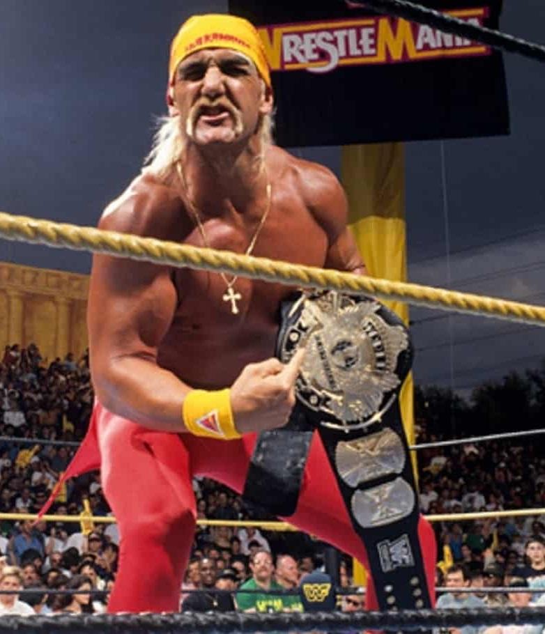 Hulk_Hogan_Wrestlemanix_IX
