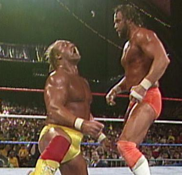 hogan-vs-savage