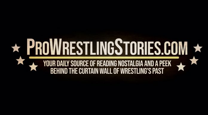 TheGorillaPosition.com now owned and operated by ProWrestlingStories.com!